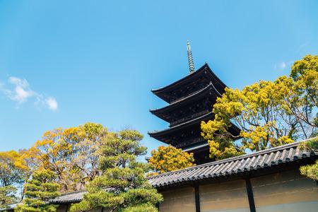 Toji temple traditional pagoda in Kyoto, Japan 報道画像
