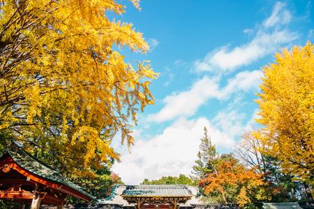 Nezu shrine at autumn in Tokyo, Japan