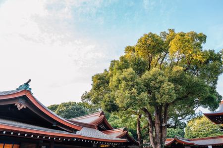 Meiji Jingu shrine in Tokyo, Japan