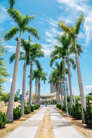 Central Park Station and palm trees in Kaohsiung, Taiwan Imagens