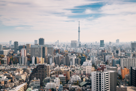 Tokyo cityscape and Skytree in Japan