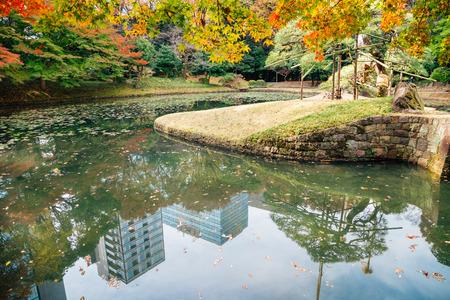 Koishikawa Korakuen Garden at autumn in Tokyo, Japan Standard-Bild