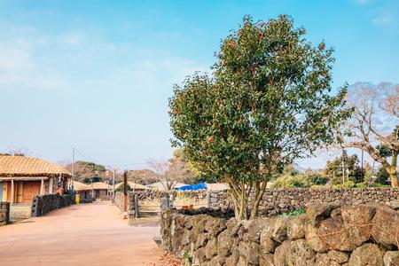 Seongeup Folk Village, Korean old traditional town in Jeju Island, Korea Stockfoto - 122903856