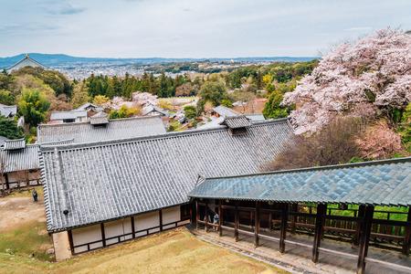 Nigatsu-do Todai-ji temple with cherry blossoms in Nara, Japan