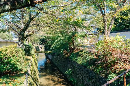 Tetsugaku no Michi (Philosophers Walk) in Kyoto, Japan