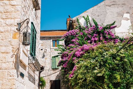 Old town buildings with flowers in Split, Croatia