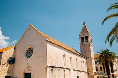 Church of St. Dominic with palm tree in Trogir, Croatia Stock Photo