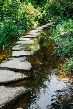 Stone path with green forest along the stream at Semiwon garden in Yangpyeong, Korea