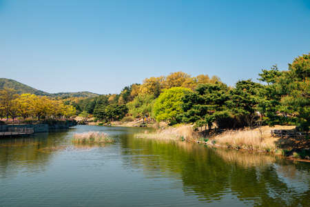 Pond and green trees at The Independence Hall of Korea in Cheonan, Korea
