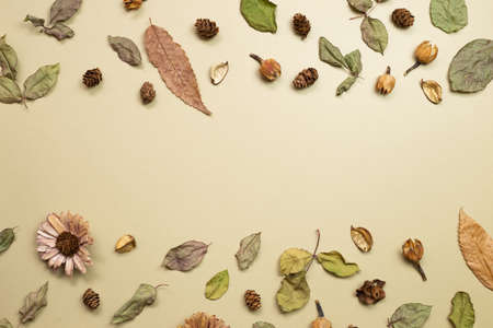 Autumn dry leaves on khaki brown background. flat lay, top view, copy space