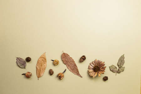 Autumn dry leaves on khaki brown background. flat lay, top view, copy space 免版税图像 - 152694554