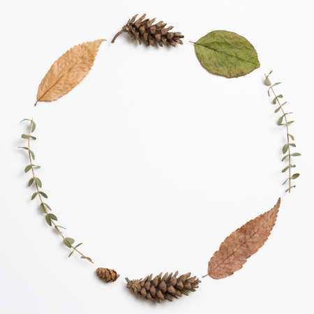 Autumn dry leaves on white background. flat lay, top view, copy space 免版税图像