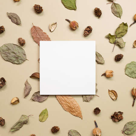 Empty memo paper with autumn dry leaves on khaki brown background. flat lay, top view, copy space 免版税图像
