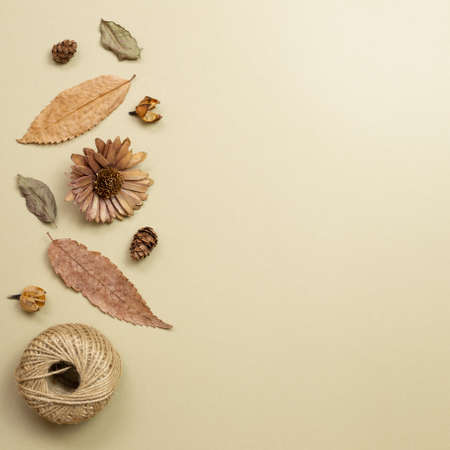Autumn dry leaves on khaki brown background. flat lay, top view, copy space 免版税图像 - 152694575