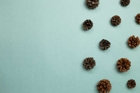 Autumn dry pine cones on green background. flat lay, top view, copy space 免版税图像