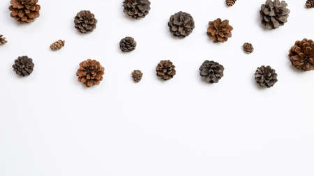 Autumn dry pine cones on white background. flat lay, top view, copy space 免版税图像 - 152694579
