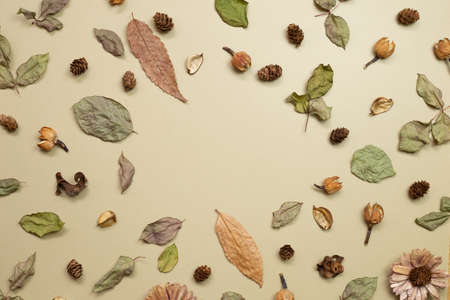 Autumn dry leaves on khaki brown background. flat lay, top view, copy space 免版税图像 - 152694578