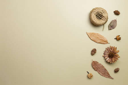 Autumn dry leaves on khaki brown background. flat lay, top view, copy space 免版税图像 - 152694581