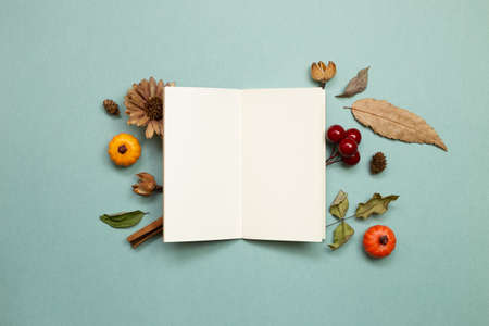 Autumn concept. Empty note paper with dry leaves on green background. flat lay, top view, copy space