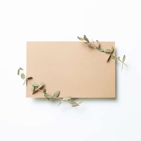 Kraft brown memo pad, empty paper with eucalyptus leaves on white background. top view, copy space 免版税图像