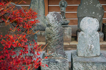 Buddha statues with autumn maple at Engakuji Temple in Kamakura, Japan
