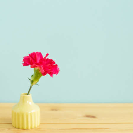 Vase of pink carnation flower on wooden table with blue background