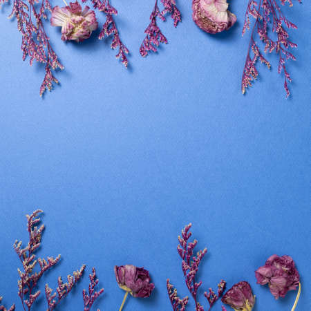 Pink misty blue and ranunculus dry flowers on blue background. flat lay, top view, copy space