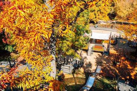 Seoul forest park, Playground with autumn colorful trees in Korea 免版税图像