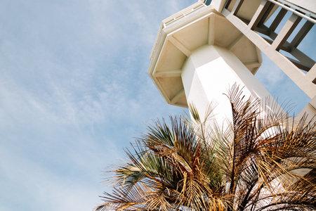 Lighthouse with palm tree at Odongdo Island in Yeosu, Korea