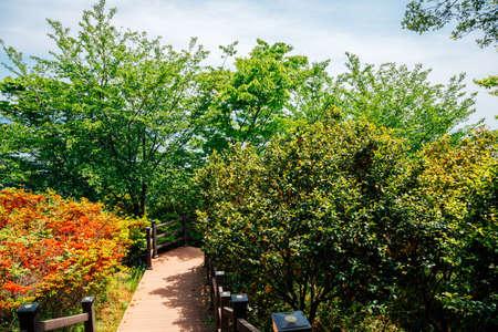 Jasan Park in Yeosu, Korea