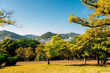 Dolsan park in Yeosu, Korea 免版税图像