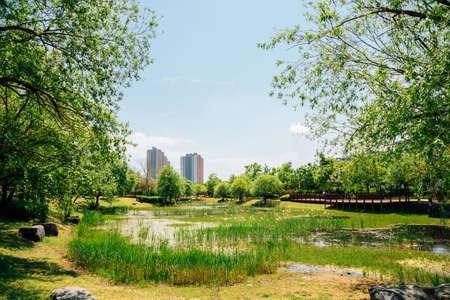 Spring of Bonghwangdae Park in Gimhae, Korea