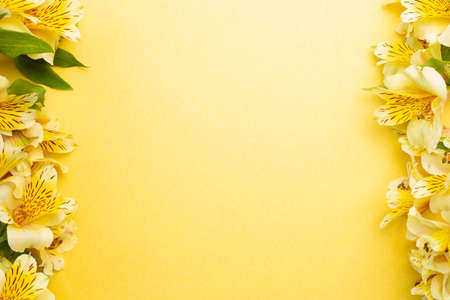 Yellow Alstroemeria flowers frame on yellow background. flat lay, top view, copy space