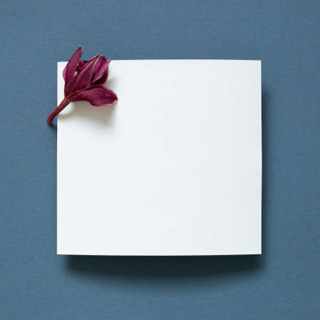 White memo pad with purple flower on navy blue background. top view, copy space 免版税图像