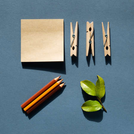 Notepad and colored pencils and wooden clips and green leaf on desk.
