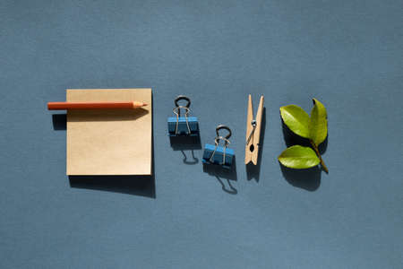 Notepad and colored pencil and clips and green leaf on desk. 免版税图像