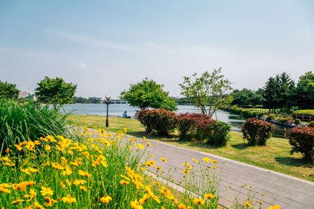 Spring of Ilsan Lake Park in Goyang, Korea 免版税图像