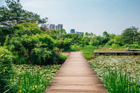 Ilsan Lake Park walkway in Goyang, Korea