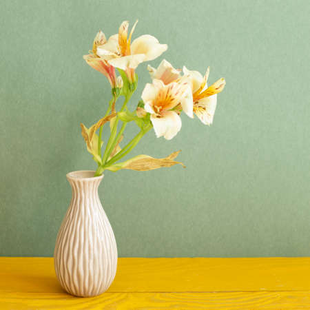 Vase of Yellow Alstroemeria flowers on wooden table. green background