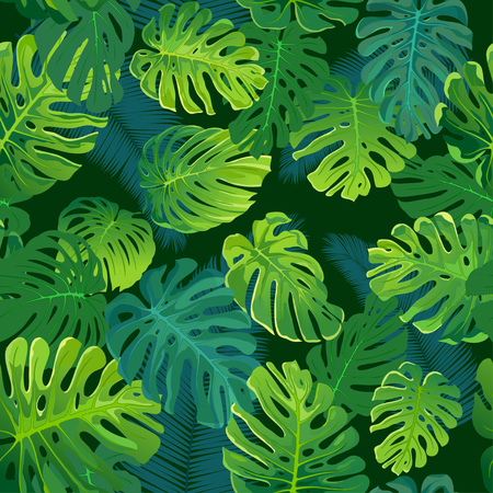 Tropical palm and monstera leaves, jungle leaf seamless vector floral pattern background.