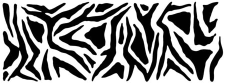 Zebra skin, stripes pattern. Animal print. Black and white background. Vector texture.