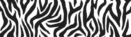 Zebra skin, stripes pattern. Animal print, black and white detailed and realistic texture. Monochrome seamless background. Vector illustration