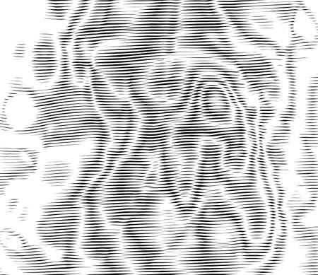 Ripple effect, wavy striped texture. Moire interference effect. Optical illusion art background. Vector monochrome glitch pattern 矢量图像