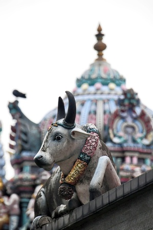 mariamman: A sacred Hindu cow statue at the Sri Mariamman Temple in Singapore.