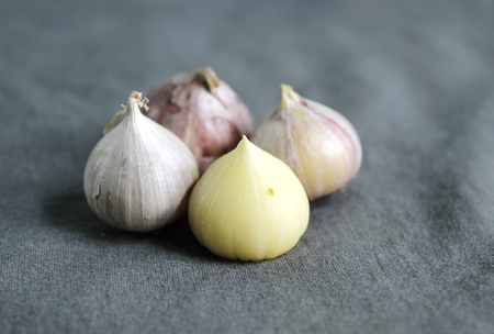 ly: Solo garlics - Harvested from Ly Son l Garlics island, Vietnam. They were Allium sativum of the variety and not of Allium ampeloprasum.