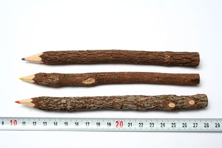 errands: Three unusual pencils made of branches of a tree near to a measuring ruler
