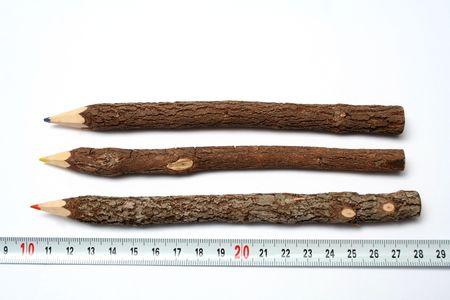 Tres l�pices hecho inusual de las ramas de un �rbol cerca de una regla de medici�n  Foto de archivo