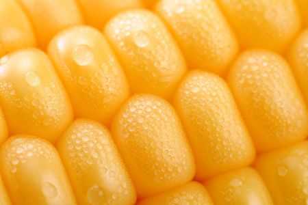 Fresh grains of corn and dewdrop, background Stock Photo