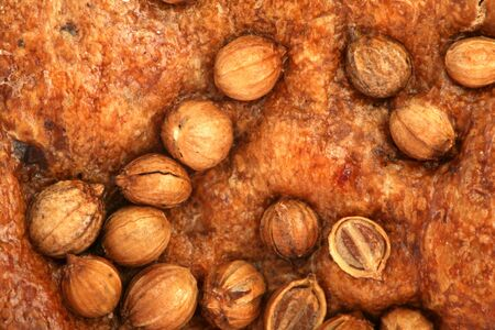 Crust of bread with seeds of a coriander, background photo