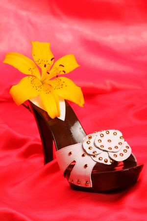 Woman shoes on red satin photo